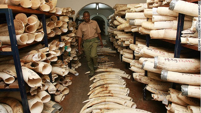 Ivory stockpiles government safe