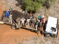 20160210_Elephant Rescue truck aerial