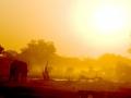 Elephants in Sunset, Moremi NP, Botswana