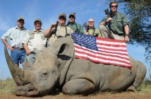 because-of-poaching-and-trophy-hunting-the-rhino-is-nearly-gone-photo-u1