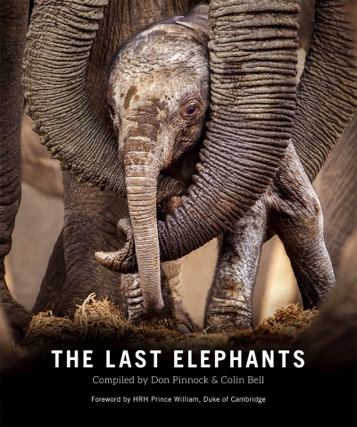 the last elephants   book review   conservation action trust did you know that in africa there is one elephant for every   people  fewer than   according to the most recent great elephant census of